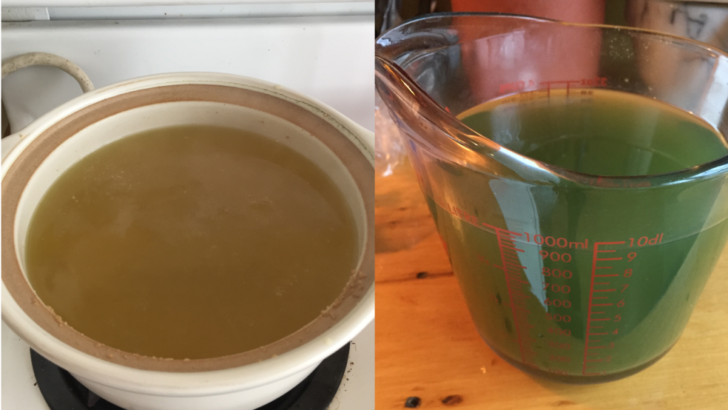 On the left is Gold Roast coffee freshly brewed, a nice golden colour. On the right is Gold Roast coffee after it has cooled, a bluish-green colour.